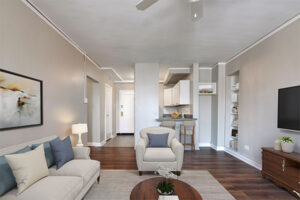 high rise apartments for rent
